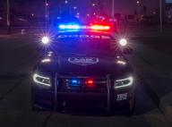 REVEALED: 2015 Dodge Charger Pursuit