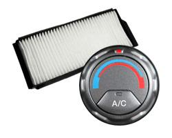 A/C Evap Service / Cabin Air Filter Special